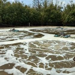 Tratamento biológico dos resíduos biodegradáveis